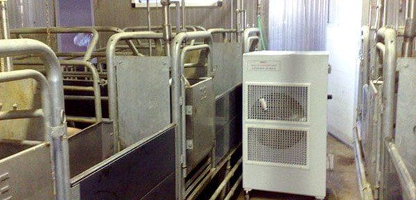rinfrescatore per stalle syneprogetti